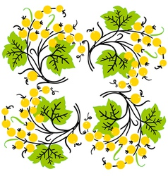 Bunch of yellow currant Ripe berry vector image