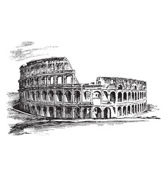 Colosseum an of the roman vintage engraving vector