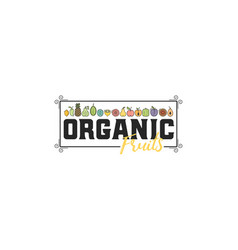 organic fruits fruits and vegetables vegetarian vector image
