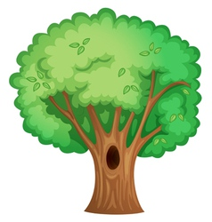 Tree object vector