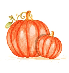 Watercolor orange pumpkins vector