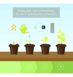 Plant growing set and infographic with icon head vector image