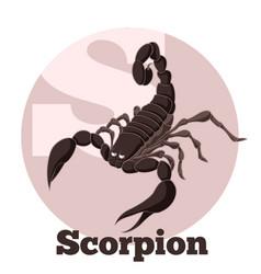 abc cartoon scorpion vector image