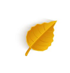 cartoon autumn fallen oak leaf isolated vector image