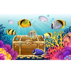 Fish and jellyfish in the sea vector image