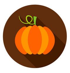 pumpkin circle icon vector image