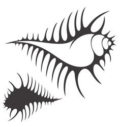 Shell vector image