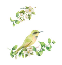Watercolor wreath with bird and flowers vector