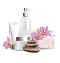 Wellness and spa salon services vector