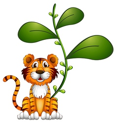 A tiger beside a vine vector image