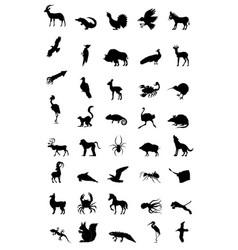 world of animal vector image vector image