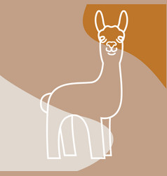 Color background with a cute lama vector