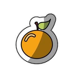Colorful orange fruit icon stock vector