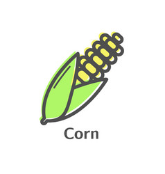 Corn thin line icon isolated maize vegetables vector