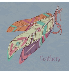 ethnic decorative feathers vector image
