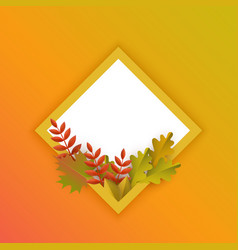 flat autumn leaves pumpkin rhombus frame vector image