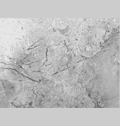 Marble texture gray background vector