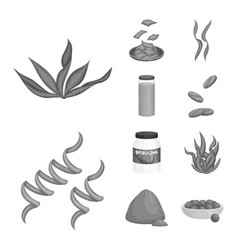 Plant and weed symbol set vector