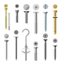 set isolated screw and nails bolt vector image