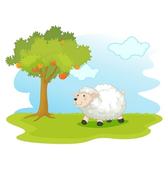 Sheep field vector