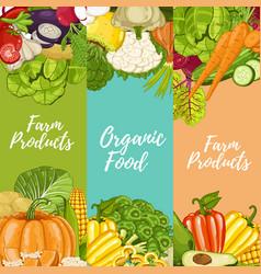 organic farm food flyers set vector image