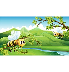 The two flying bees vector image vector image