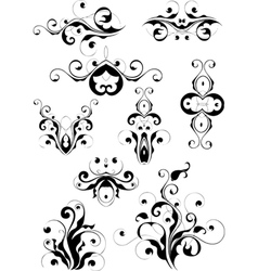 set of floral designs vector image