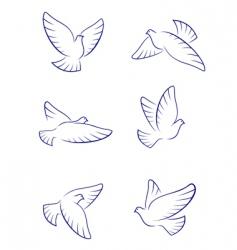 white doves vector image