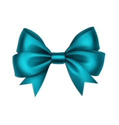 Blue Satin Gift Bow Isolated on White vector