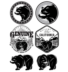 set of stylish retro badges with bears forest vector image