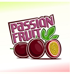 passion fruit still life vector image vector image
