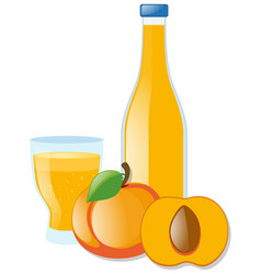 Fresh nectarine and juice vector