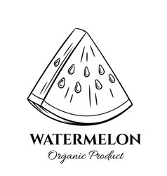 hand drawn watermelon icon vector image