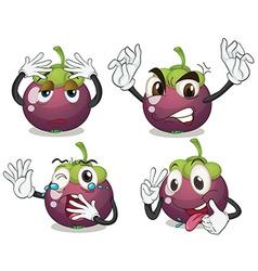Mangosteen fruits vector