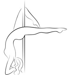 Pole dancer vector image