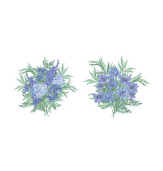 Set of elegant bouquets made of beautiful blue vector