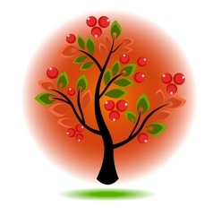 Tree growing berries and leaves vector image