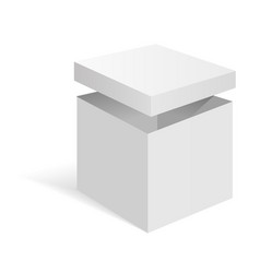 white blank cardboard package box template vector image