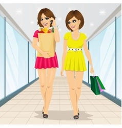 Young women holding grocery shopping paper bags vector