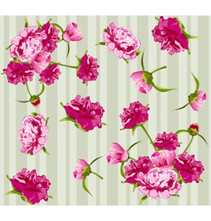 peonies seamless background vector image vector image