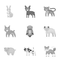 zoo toys hunting and other web icon in vector image vector image