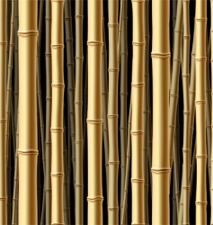 seamless bamboo forest background vector image