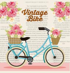 vintage bike basket flowers natural decoration vector image