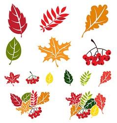 Autumn leaves set Flat style vector image