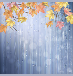 Autumn rainy background vector
