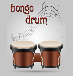 bongo drums musical instruments stock vector image