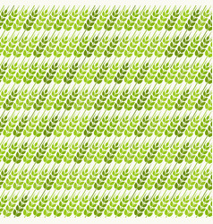 green diagonal wheat seamless pattern vector image