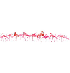 horizontal background with flamingoes vector image