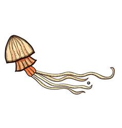jellyfish isolated on white background vector image