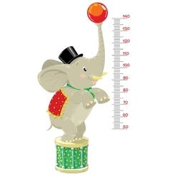 Meter wall or height chart with Funny elephant vector image